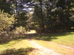 Country Retreat_driveway